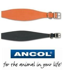 Ancol Bridle Leather Whippet Greyhound Lurcher Dog Puppy Collar Black Tan