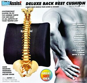 Body Assist Deluxe Lower Back Support Rest Cushion