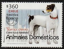 Chile 2018 America UPAEP - Dog - Chilean Terrier - Pets