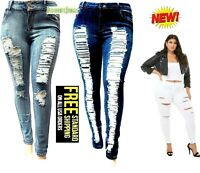 JACK-D WOMENS PLUS SIZE Stretch Distressed Ripped BLUE SKINNY DENIM JEANS PANTS