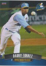 2016 Myrtle Beach Pelicans Daury Torrez Rookie Card Cubs