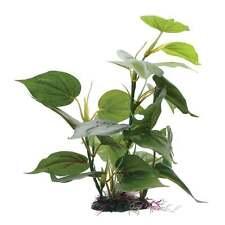 Fluval Anubias Plant 30cm