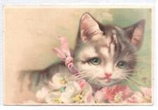 Cat Collectable Postcards