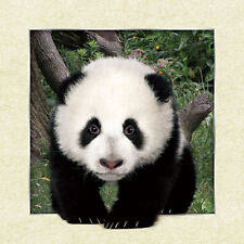 Giant Panda Big Lenticular 3D Picture Animal Poster Painting Home Wall Art Decor