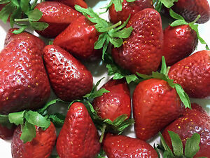 Artificial Strawberry, Bag of 24 Decorative Fake Fruit Berries Fake Strawberries