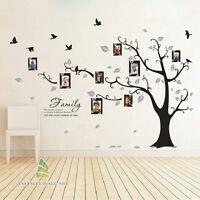 Family Tree Bird Photo Frame Vinyl Nursery Wall Quotes, Wall Stickers, --- PD508