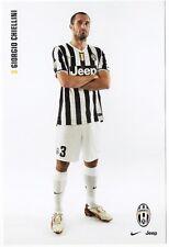 Cartoncino Juventus – Giorgio Chiellini