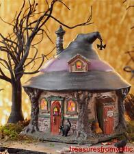 Dept 56 Halloween Village HILDA'S WITCH HAUNT #4025341 NRFB Retired coord Hilda