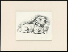 SEALYHAM TERRIER LOVELY LUCY DAWSON DOG ART SKETCH PRINT READY MOUNTED