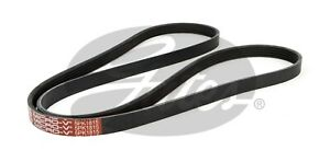 Gates Ribbed Belt 5PK1815