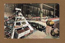 Durango,CO Horticulture Display,Colorado-New Mexico Fair used 1910