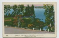 Postcard - Raquette Lake, NY - VINTAGE VIEW OF SOUTH INLET - Adirondack Mts - C