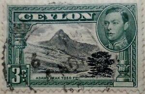 Ceylon 1938 Adam park