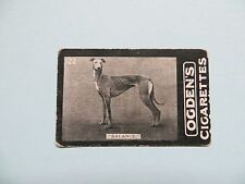 Vintage Ogdens Cigarette Card 'Balance' Newmarket Meeting Dec 1901 #122