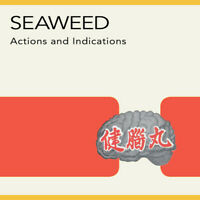 Seaweed - Actions and Indications [New Vinyl LP] Digital Download