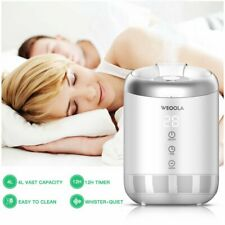 Weoola Air Purifier Hepa Filter,Ultra Quiet Anion Cool Mist Air Cleaner Home Hot