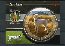 Togo 2015 MNH Dogs 1v S/S Pets Domestic Animals Poodle Cocker Spaniel Dalmatian