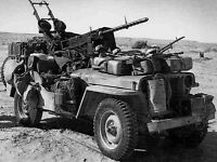 WW2 Photo WWII British Long Range Desert Group Jeep  LRDG North Africa  / 1386