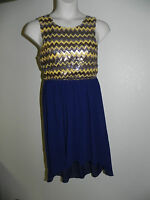 Pink Owl Dress Large Womens High Low Sequin Upper Navy Multi NWT