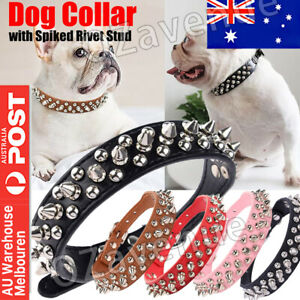 Dog Collar Leather Studded Black Brown Small Medium Large Breeds Pet Melbourne