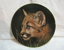Cougar Cat Collector Plate Cubs of the Big Cats Collection Princeton Gallery