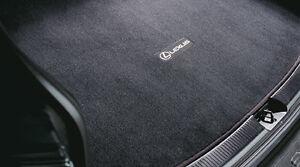 Lexus RX330 RX350 RX400H (2004-2009) OEM CARPET CARGO MAT (Black) PT208-48040-12