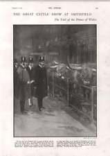 1900 Cattle Show Smithfield Count Yorck Von Wartenburg Suffocated Chinese Stove
