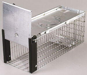 "New! *HAVAHART* Live Animal Trap 16"" Wire Cage CHIPMUNKS Squirrel Moles Rat 0745"