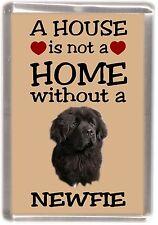 "Newfoundland Dog Fridge Magnet ""A HOUSE IS NOT A HOME"" by Starprint"