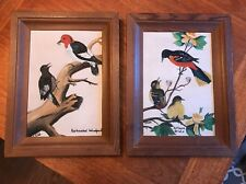 VINTAGE PAIR OIL ON CANVAS PAINTINGS SIGNED E Todd  Woodpecker Balt. Oriole