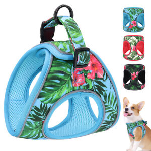 Reflective Small Dog Step-in Harness Soft Mesh Pet Vest with Handle Pink Blue