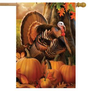 "Harvest Turkey Fall Thanksgiving House Flag Autumn Pumpkins 28"" x 40"" Briarwood"