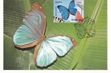 CARTE MAXIMUM - FRANCE - MORPHO BLEU - 2010 .