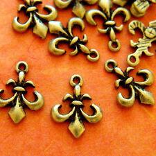 12pcs 16mm Antique Brass Fleur De Lis Charms AD-11403