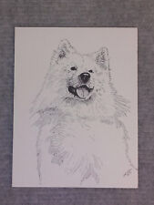 Samoyed Pen and Ink Stationary Cards, Note Cards, Greeting Cards. 10 pack.