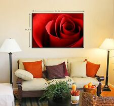 Flower Canvas Designs 1 Panel Prints Red Rose Flower Prints on Canvas Wall Art