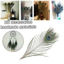 1/10pcs peacock feather - High Quality natural peacock feathers are 6 -12
