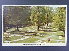Old Salem Moravian Graveyard North Carolina NC Color Chrome Postcard Vintage Vtg
