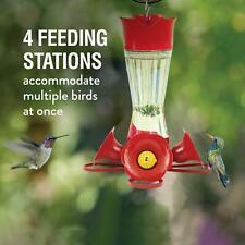 Perky-Pet 203Cpbn Pinch Waist Glass Hummingbird Feeder with Nectar
