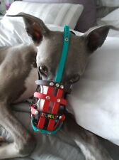 Whippet dog muzzle BUMAS - Cost £180.00 Used once