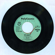 Philippines BON JOVI Dry County 45 rpm PROMO Record