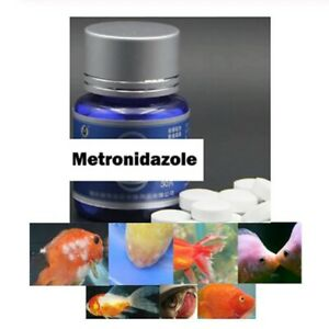 Fish Fungus Aquarium Tropical Treatment Metro nidazole Anti Gill Parasites