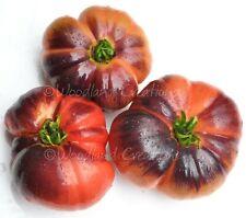 Blue Beauty Tomato Seeds Pink Beefsteak Organic Heirloom Free Shipping USA