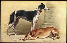 Raphael Tuck & Sons Dog Collectable Animal Postcards