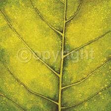 Caroline Wenig: Spring Green Blatt Grün Fertig-Bild 30x30