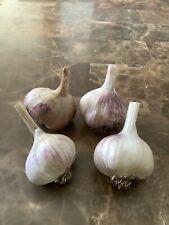 Organic White Softneck Garlic One Pound.