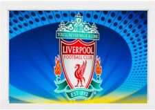 Liverpool FC Roller Blinds
