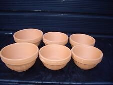Clay Canary nest pans