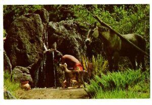 FL Florida Orlando Walt Disney World Amusement Park Frontierland Scene Postcard