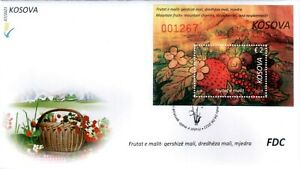 Kosovo Stamps 2021. Forest fruits: blueberry strawberry raspberry. FDC Block MNH